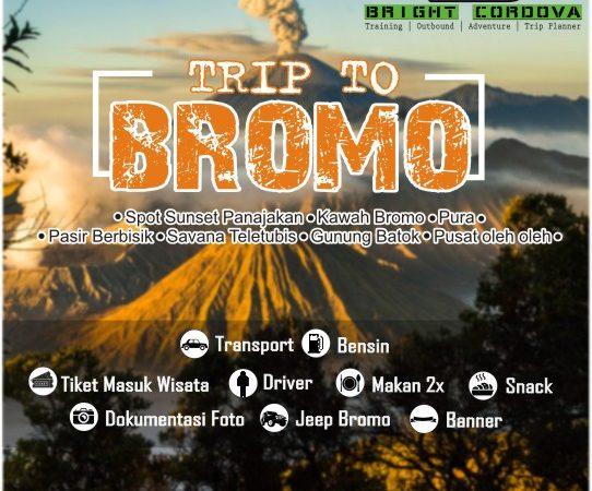 Bromo private tour